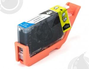 Cartouche Photo Black Compatible Canon PGI72 pour Imprimante Pixma PRO-10