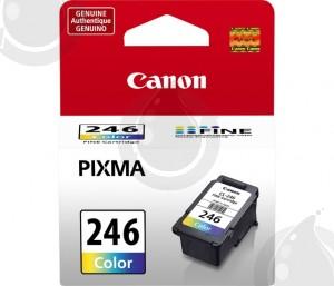 Cartouche d'encre Couleur d'origine OEM Canon CL246